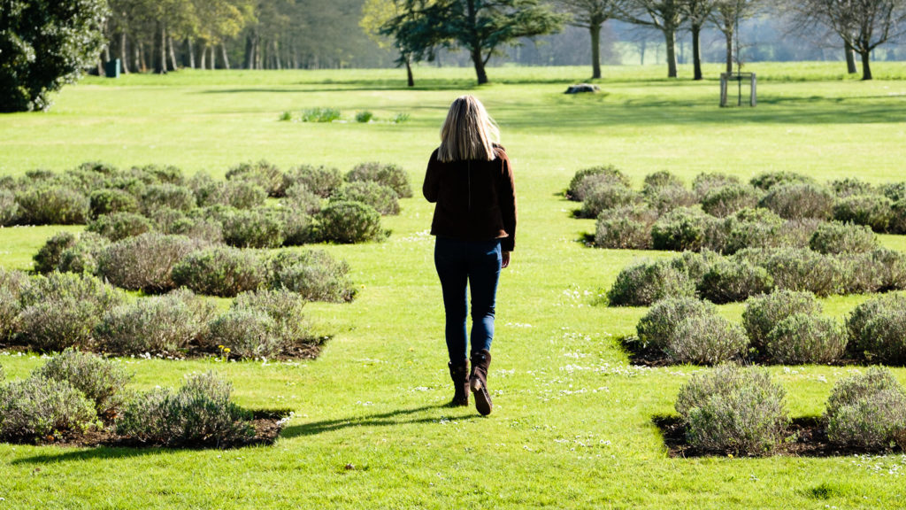 Personal Branding Photography - relaxed outdoors branding photos in lavender gardens at Lucknam Park Hotel Wiltshire