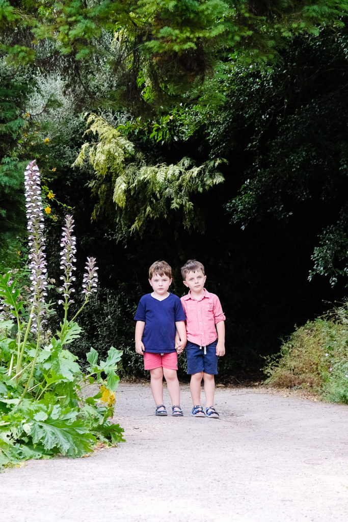 Family photo session - young brothers holding hands at Bath Botanical Gardens