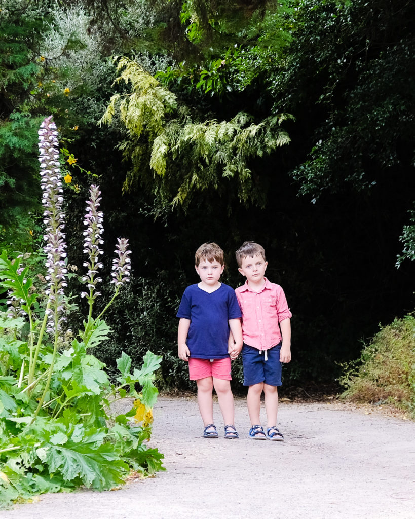 Family photo session at the Bath Botanical Gardens - young brothers holding hands