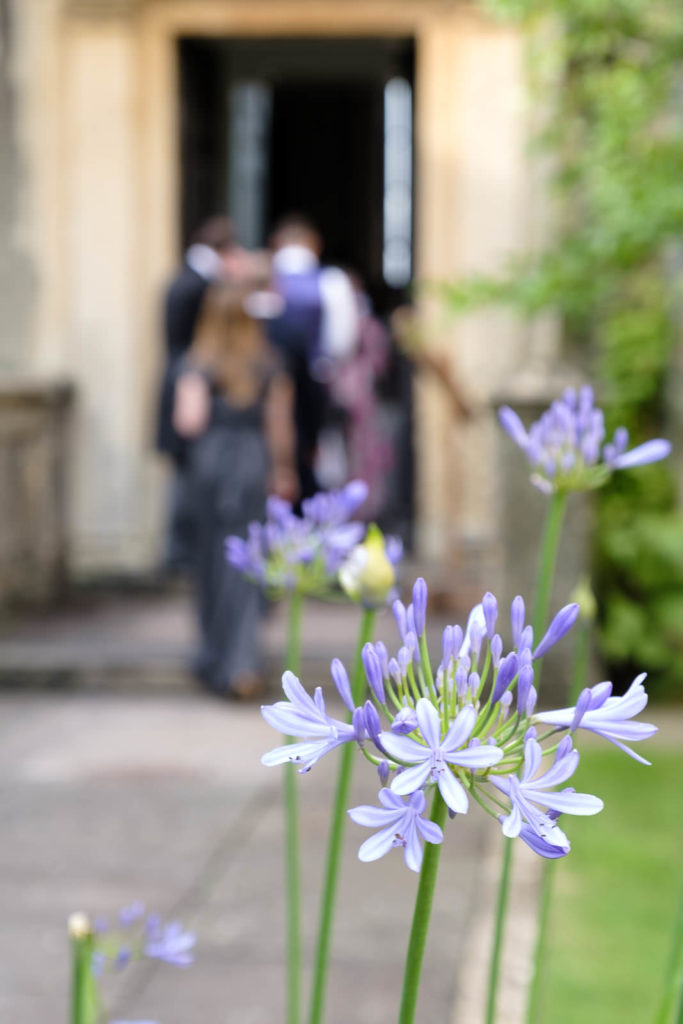 Guests off to dinner with light blue agapanthus in the foreground